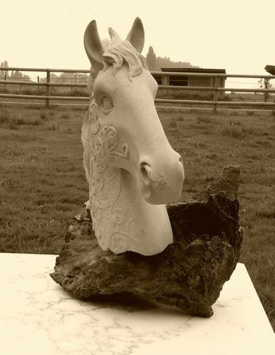 Taille en pierre de Caen. Tête de cheval