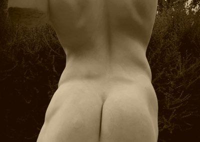 Buste - Sculpture sur pierre de Caen